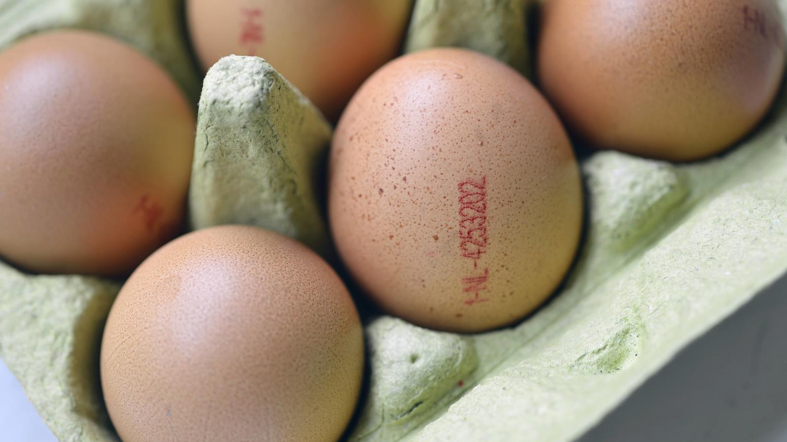 Fipronil-Eier: Nun ermittelt die Justiz class=