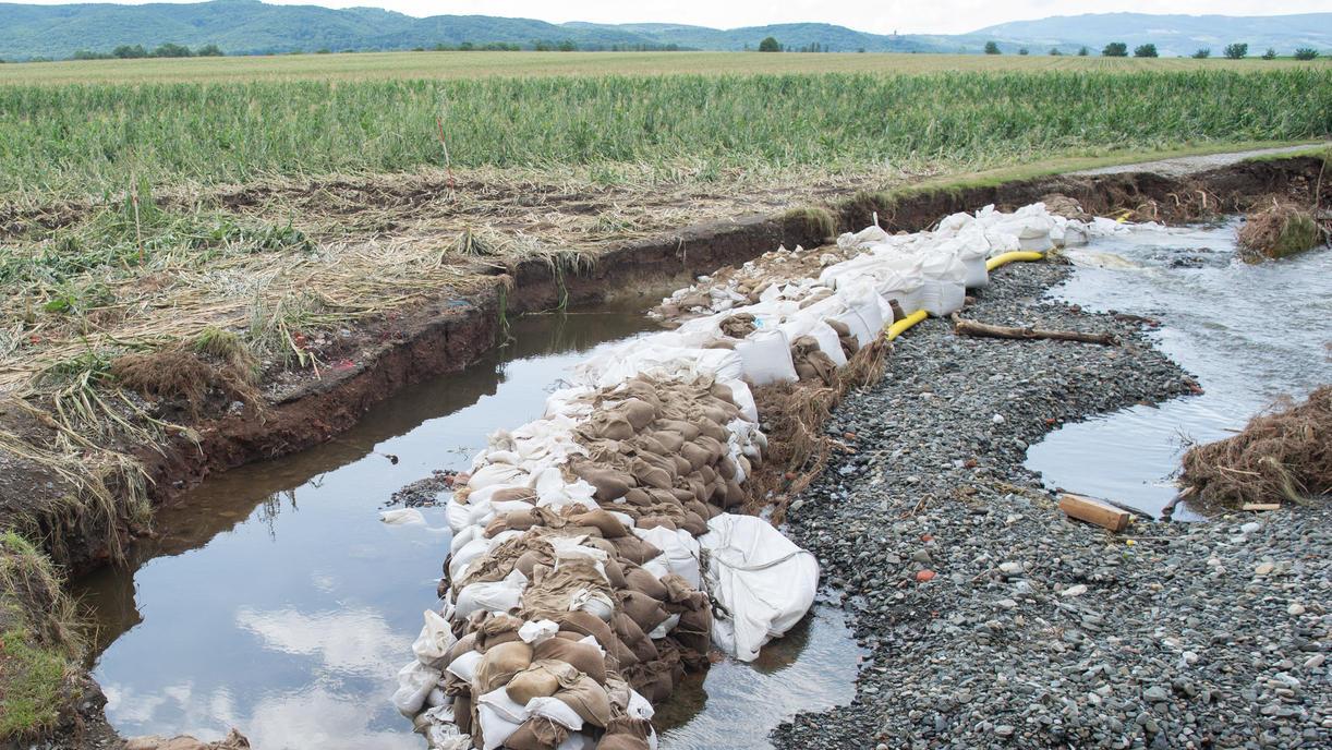 Nach Hochwasser im Harz: Weibliche Leiche bei Aufräumarbeiten am Flussufer gefunden