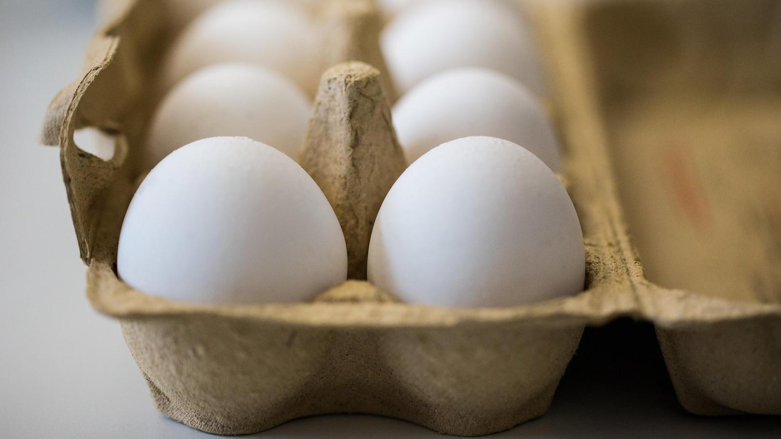 Rewe, Aldi und Penny rufen Eier zurück