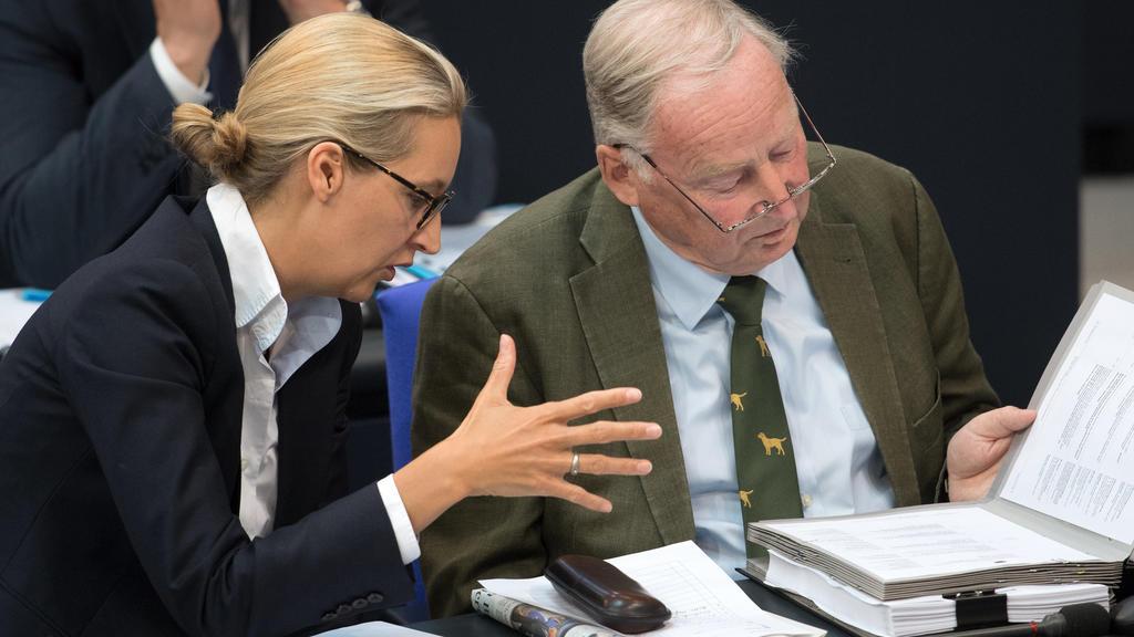 08.06.2018, Berlin: Alice Weidel und Alexander Gauland, Fraktionsvorsitzender der AfD, unterhalten sich während der 37. Sitzung des Bundestages. Themen der Sitzung sind unter anderem erste Beratungen zu Musterfeststellungsklagen und Staatszuschüsse f