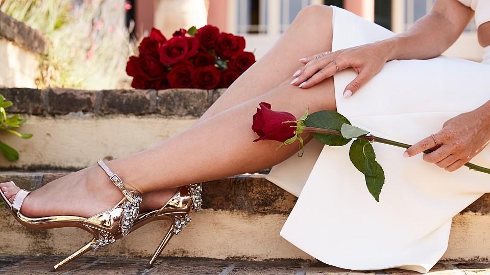Ab dem 18. Juli kämpfen wieder 20 Männer um die Rose der neuen Bachelorette