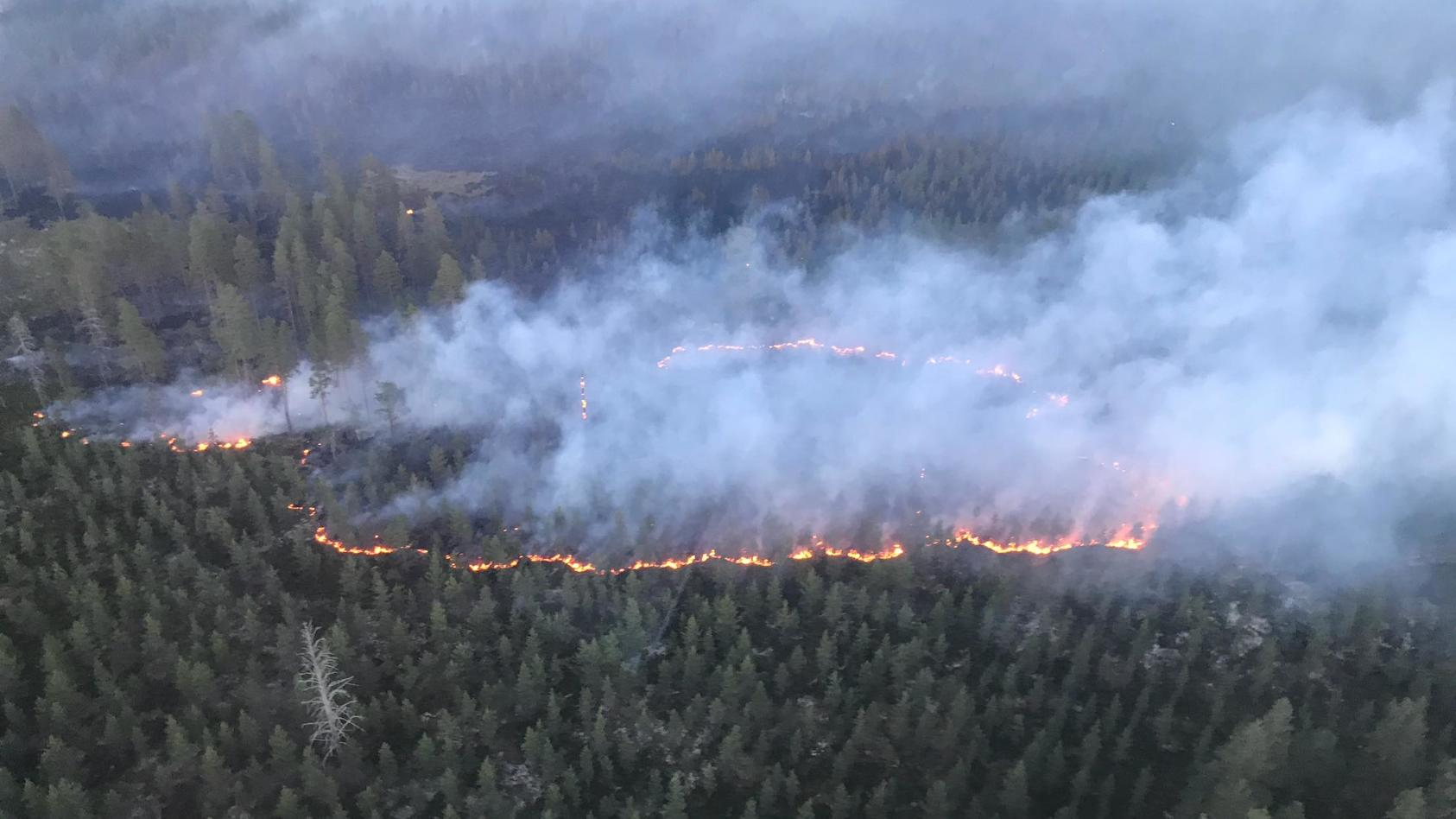 Die Waldbrände in Schweden sind teils so schwer zugänglich, dass die Rettungskräfte zu ungewöhnlichen Mitteln greifen.