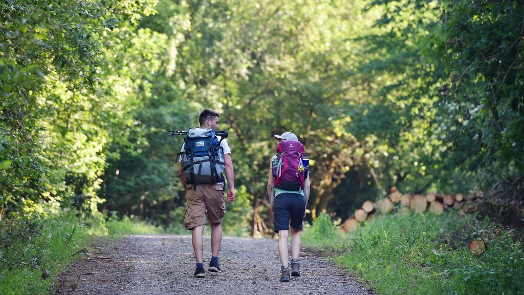 Zwei Wanderer gehen auf dem Hexenstieg im Harz, aufgenommen am 31.05.2018 bei Osterode. Foto: Frank May/picture alliance (model released) | Verwendung weltweit