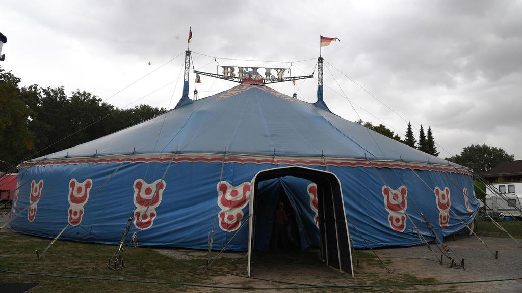 Zirkus aus dem niedersächsischen Visselhövede: Robbys Zuhause.