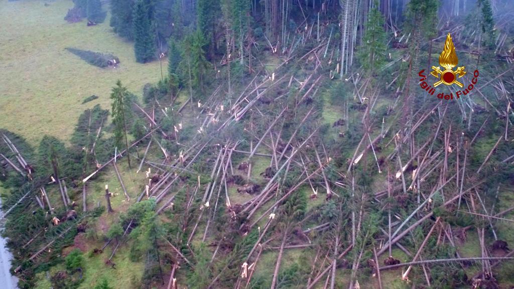 Italien Belluno Unwetter umgeknickte Bäume
