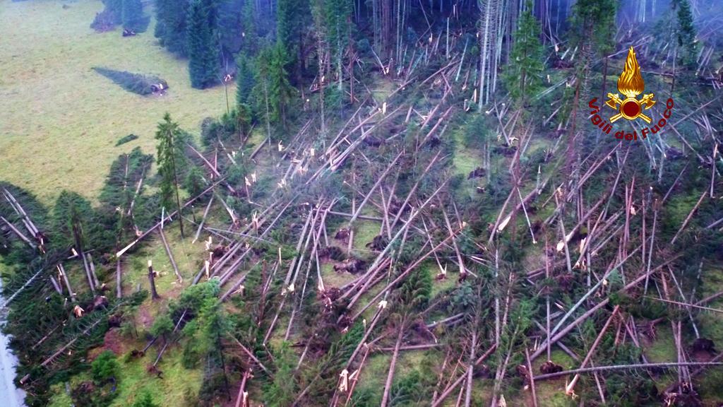 HANDOUT - 03.11.2018, Italien, Belluno: Dieses von der italienischen Feuerwehr zur Verfügung gestellte Foto zeigt umgestürzte Bäume, die auf dem Boden in einem Wald bei Belluno liegen. Unwetter haben in Italien Chaos und Verwüstung angerichtet. Foto: