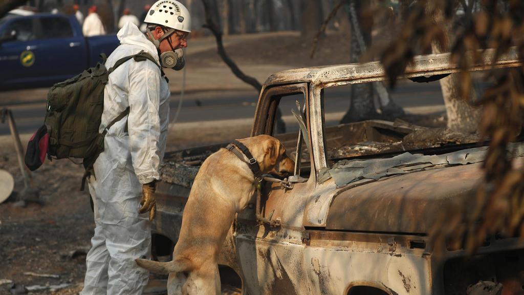 Suche nach Opfern der Waldbrände in Kalifornien