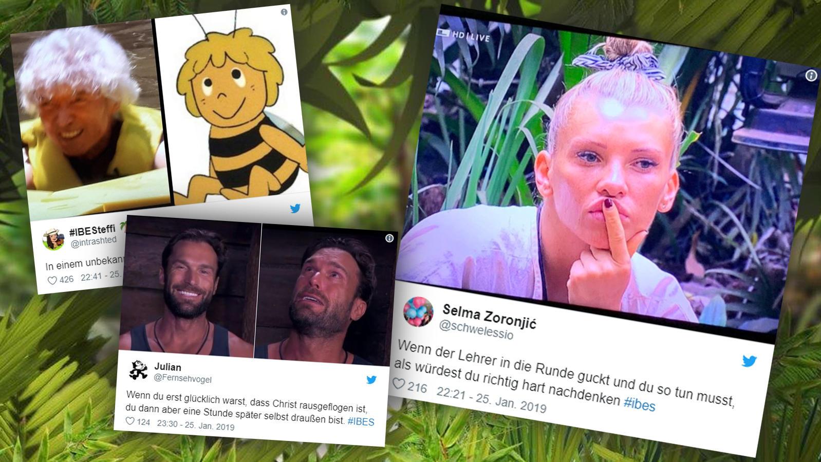 Die Twitter-Reaktionen zum 15. Tag im Dschungel.