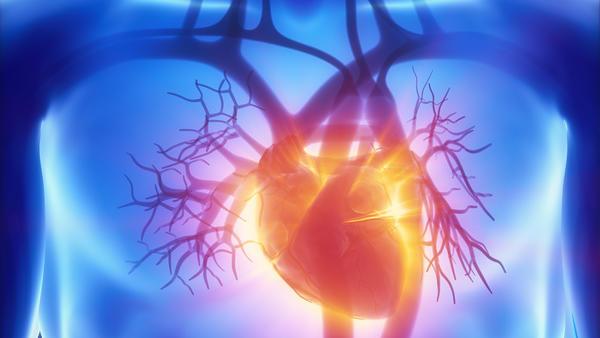 Gesundheitslexikon: Arginin ist eine wichtige Stickstoffquelle für den menschlichen Organismus. Ohne Arginin könnte der Körper kein Stickstoffmonoxid (NO) bilden.