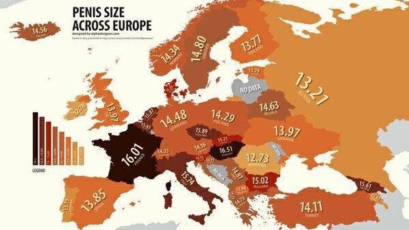 Penis größe durchschnitt