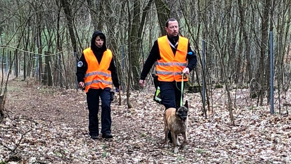 Hier sucht die Polizei den Wald bei Storkow mit Spürhunden ab. Fall Rebecca.
