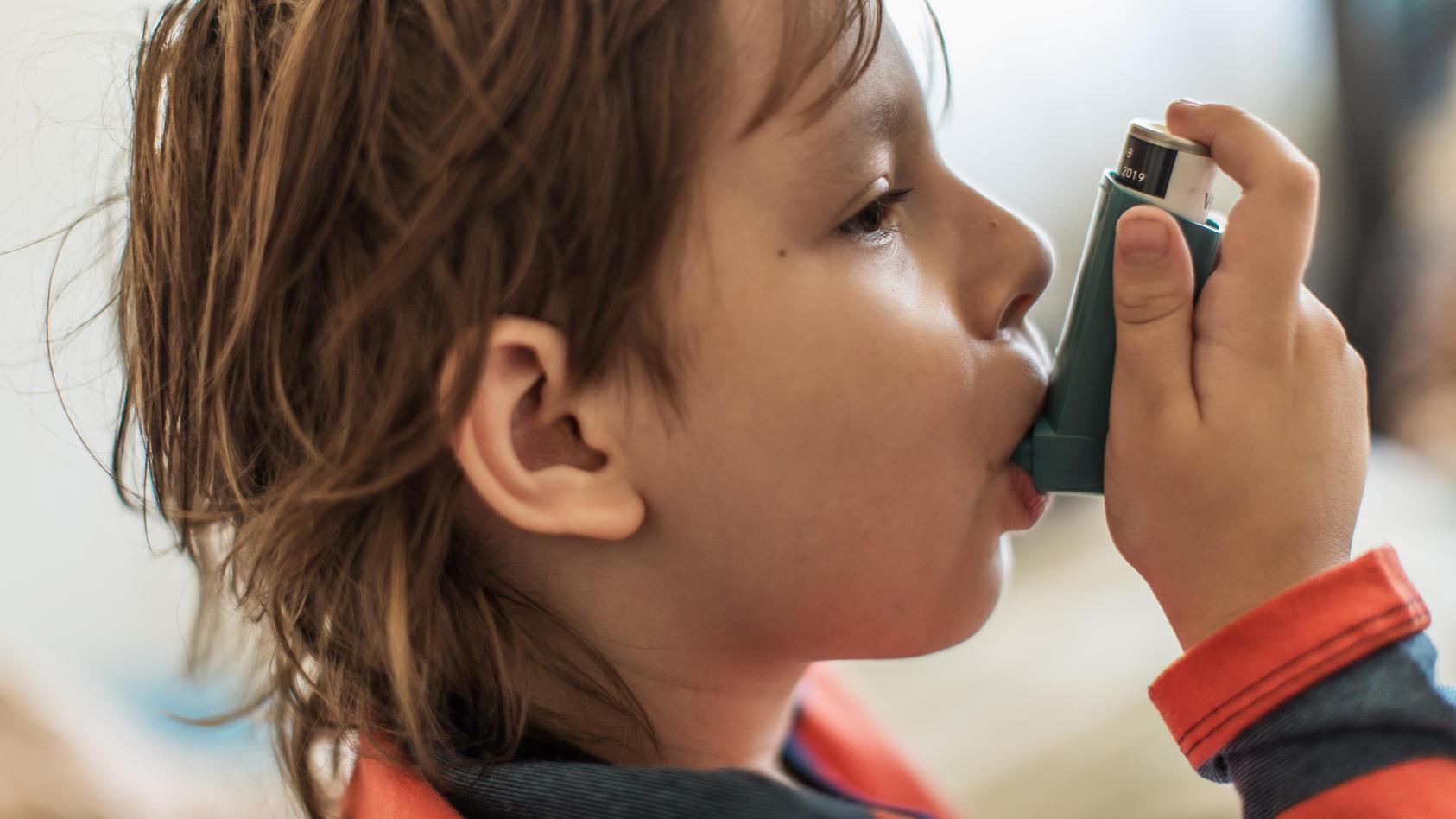 Die Bedeutung inhalierter Aerosole für therapeutische Zwecke in der Medizin ist seit vielen Jahrzehnten anerkannt.