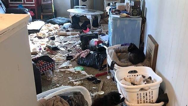 In dieser Wohnung mussten die armen Tiere hausen.