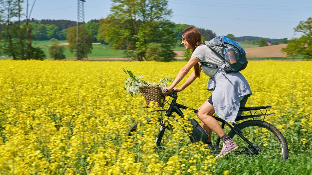 Vor allem auf hochwertige Bikes haben es Fahrraddiebe abgesehen
