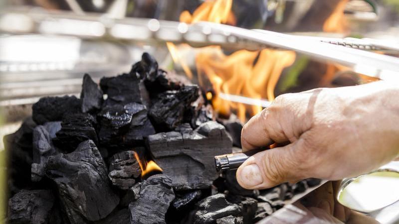 Holzkohle für den Grill stammt am besten von heimischen Hölzern und aus legaler Waldbewirtschaftung.