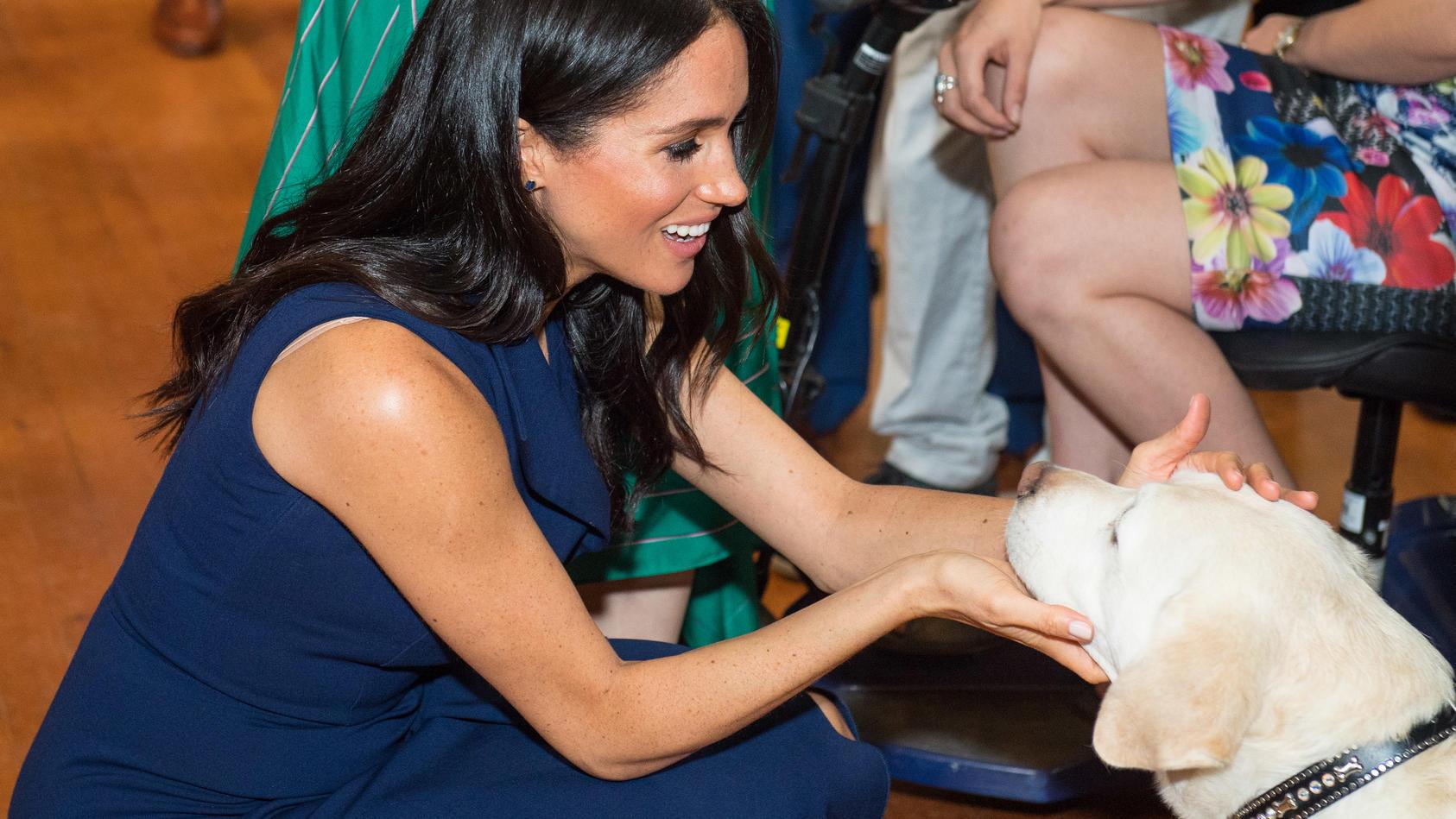 Herzogin Meghan hat ein Herz für Tiere