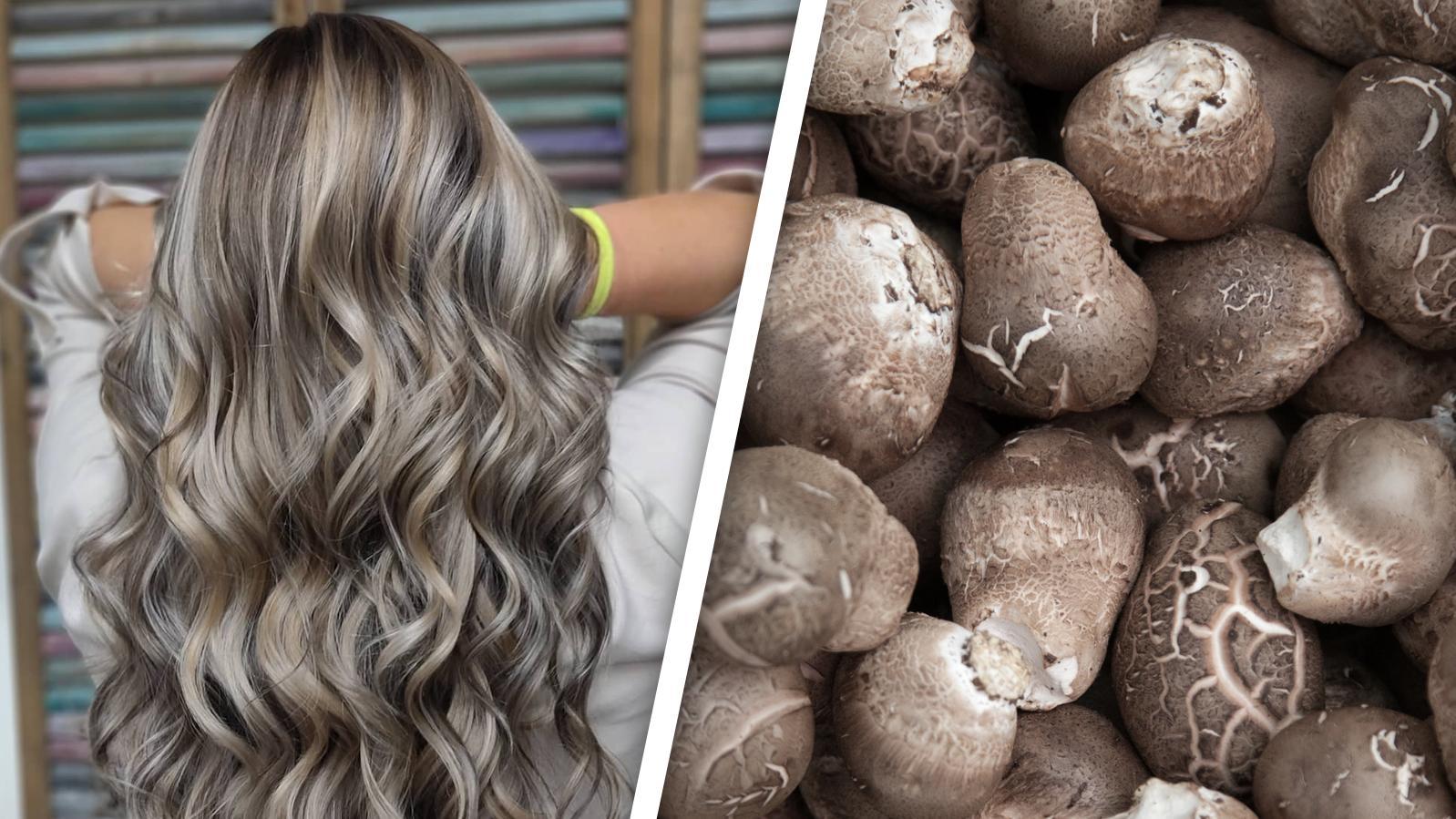 Haare wie frisch gesammelte Pilze? Sieht besser aus, als es klingt...