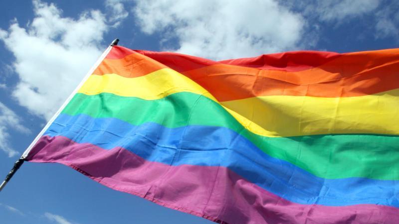 Eine Regenbogenfahne weht im Wind. Foto: Wolfgang Kumm/Archivbild