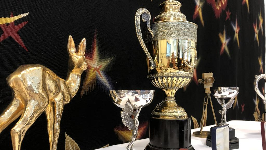 08.07.2019, Großbritannien, London: Ein Bambi, zwei Renshaw-Trophäen, die Nachbildung eines Wimbledon-Pokals und die Goldene Kamera aus dem Jahr 1989 der deutschen Sportlegende Boris Becker sind während einer Online-Auktion zu sehen. Bis Donnerstag,