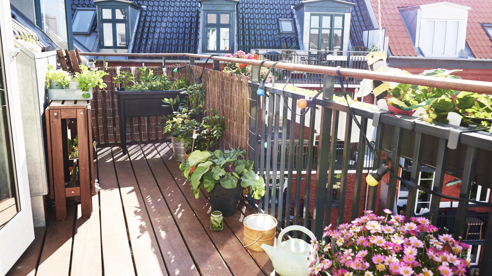 Sichtschutz Fur Ihren Balkon 4 Moglichkeiten Fur Mehr Privatsphare