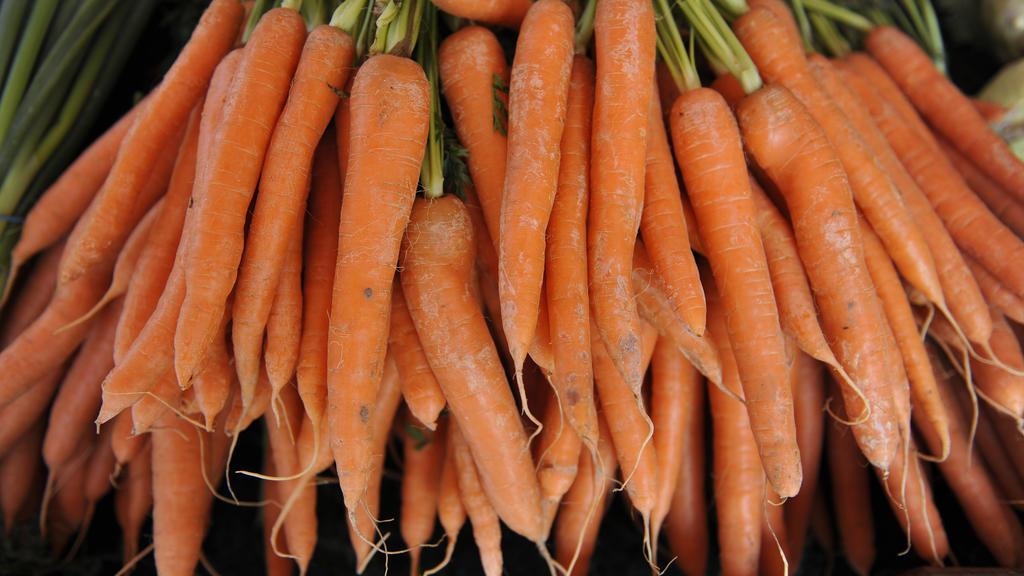 Karotten mit Grün sind am Dienstag (20.07.2010) auf dem Viktualienmarkt in München (Oberbayern) zu sehen. Foto: Marc Müller dpa/lby