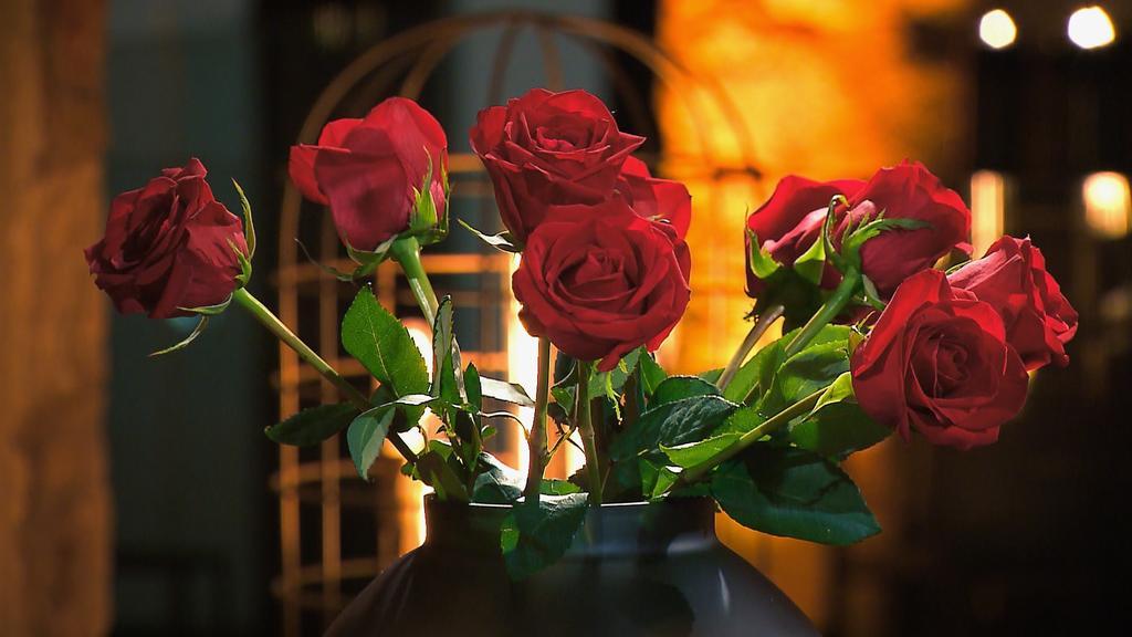 Halbzeit: 10 Kandidaten kämpfen noch um das Herz von Bachelorette Gerda Lewis. Wer wird weitere Rosen bekommen?