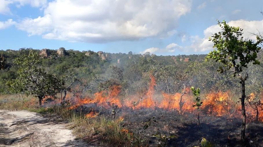 Brasilien, Mato Grosso: Auf diesem von der Feuerwehr zur Verfügung gestellten Bild brennen Flammen auf einem trockenen Feld. In Brasilien wüten die schwersten Waldbrände seit Jahren.