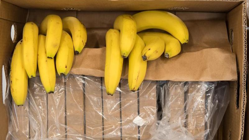 Päckchen zu je einem Kilo mit Kokain und Bananen liegen in einer Kiste. Foto: Peter Kneffel/dpa/Archivbild