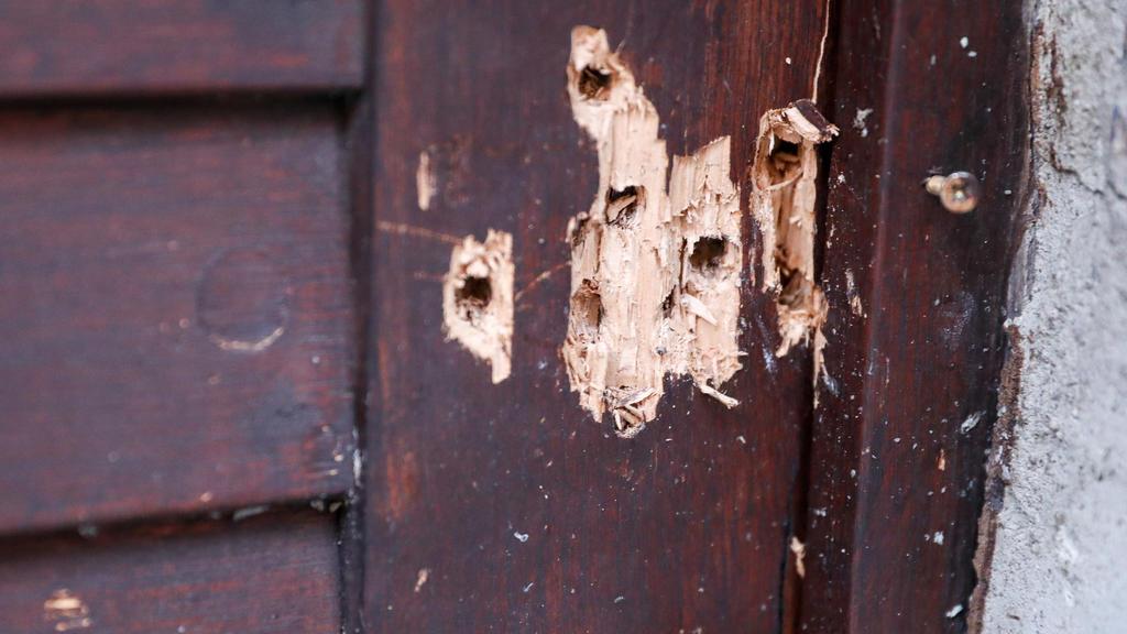 Dutzende Einschusslöcher in der Synagogen-Tür zeugen vom versuchten Massaker in Halle.