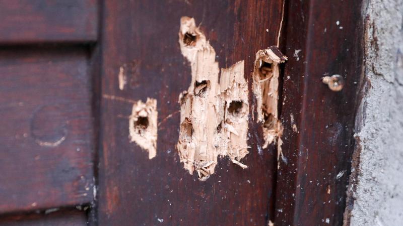 Einschusslöcher in der Tür der Synagoge von Halle. Foto: Jan Woitas/zb/dpa/Archivbild