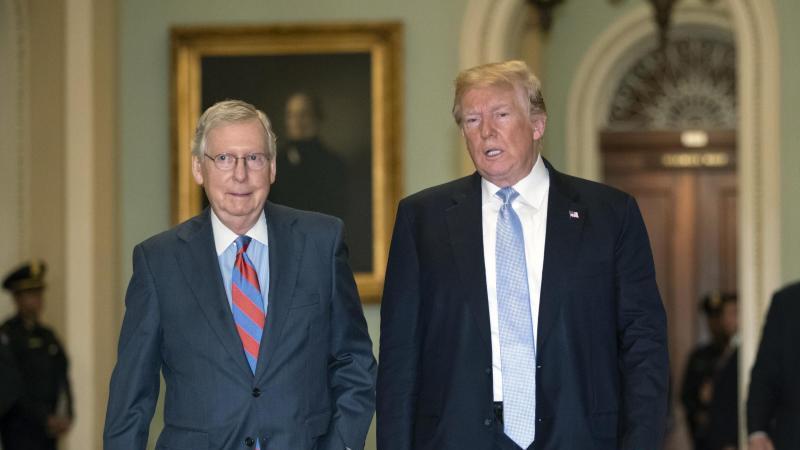 Der republikanische Mehrheitsführer im US-Senat, Mitch McConnell (l), und Präsident Donald Trump im Weißen Haus in Washington. Foto: J. Scott Applewhite/AP/dpa