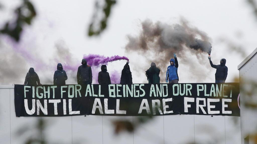 Mit Transparenten und Rauchbomben auf dem Dach: Aktivisten blockieren seit den frühen Morgenstunden einen Schlachthof in Kellinghusen.