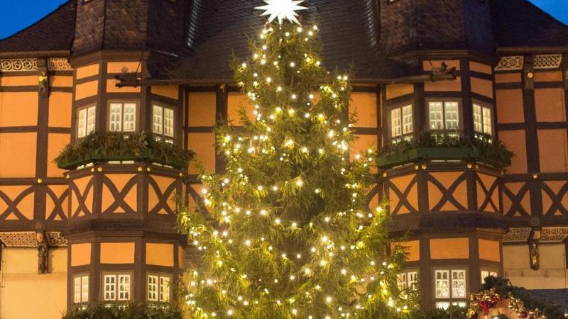 Ein Weihnachtsbaum steht auf dem Markt. Foto: Klaus-Dietmar Gabbert/zb/dpa