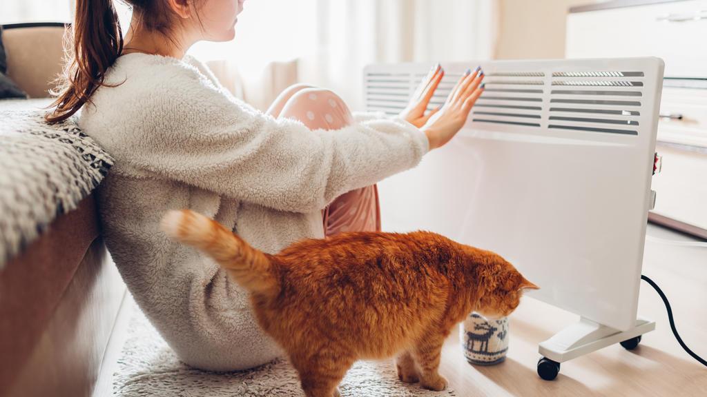 Frau und Katze wärmen sich am Heizkörper