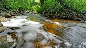 Der gefährliche Darmkeim lagert sich im Moment vermehrt in der Umwelt ab.