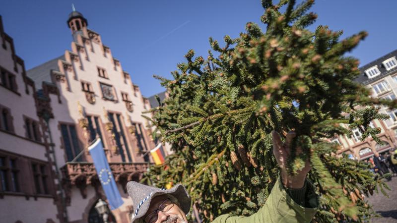 """Eberhard Eisentraud von der Gruppe """"Peter von Orb"""" steht neben dem Frankfurter Weihnachtsbaum 2019. Foto: Frank Rumpenhorst/dpa"""