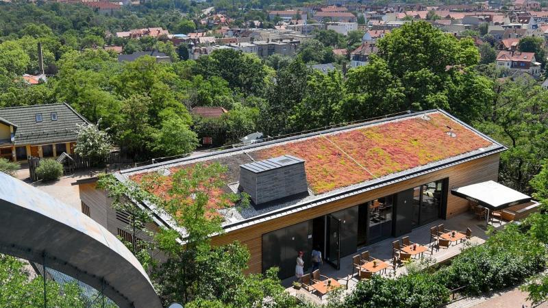 Blick vom Aussichtsturm im Bergzoo Halle/Saale auf die Anlage. Foto: Hendrik Schmidt/zb/dpa