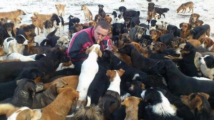 1.200 Hunde hat Sasha gerettet und aufgenommen.