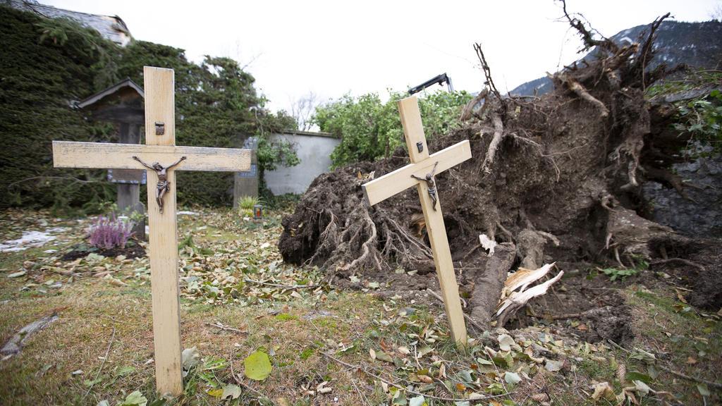 15.11.2019, Bayern, Garmisch-Partenkirchen: Umgestürzte Bäume liegen auf dem Friedhof im Ortsteil Partenkirchen. Ein Föhnsturm hatte am Morgen im Landkreis für Schäden gesorgt, auch Bahnlinien mussten gesperrt werden. Foto: Josef Hornsteiner/dpa +++