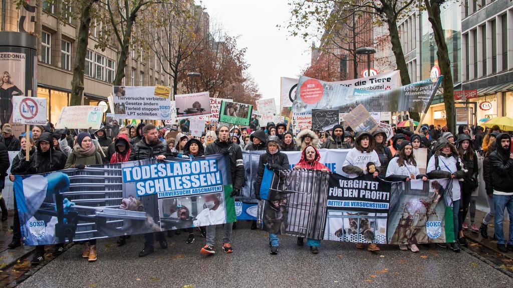 16.11.2019, Hamburg: Teilnehmer einer Demonstration gegen Tierversuche ziehen in Hamburg mit Transparenten mit der Aufschrift «Todeslabore schließen! Tierversuche abschaffen» (l) und «Vergiftet für den Profit! Rettet die Versuchstiere» durch die Inne