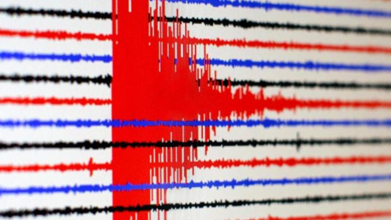 Ein Seismogramm zeigt ein Erdbeben an. Foto: Martin Gerten/dpa/Archivbild