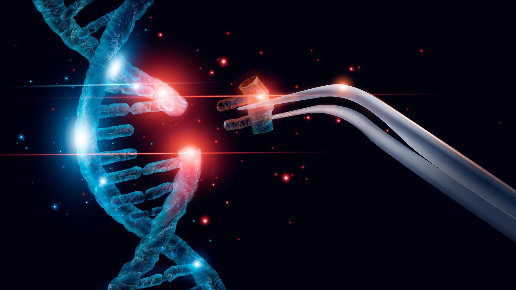 Eine Mutation ist eine Veränderung des Erbguts eines Organismus