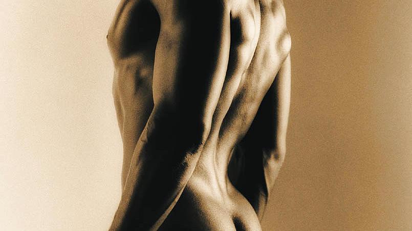 Muskeln sind hoch flexible Organe, die je nach Beanspruchung schnell an Substanz gewinnen