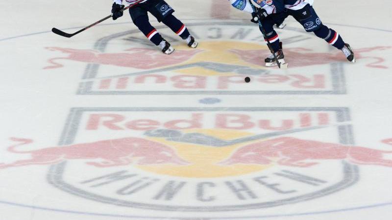 Spieler kämpfen um den Puck. Auf dem Boden ist das Logo des EHC Red Bull zu sehen. Foto: Andreas Gebert/dpa/Archivbild