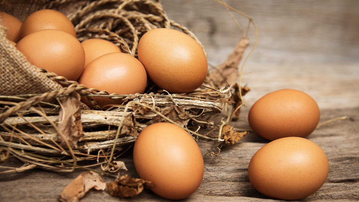 XL-Eier bedeuten für viele Hennen auch eine XL-Qual.