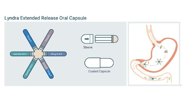 Seesternförmige Anti-Baby-Pille