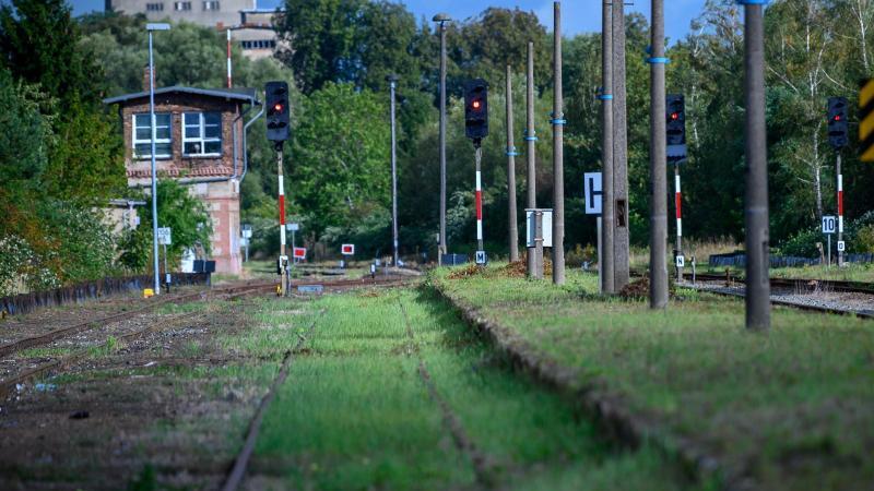 Gras wächst zwischen den Schienen auf dem Gelände des Bahnhofs von Malchin in Mecklenburg-Vorpommern. Foto: Jens Büttner/zb/dpa
