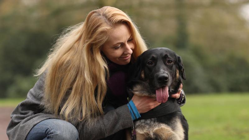 Wer einen Hund möchte, muss diesen Schritt genau überlegen. Denn man übernimmt für viele Jahre die Verantwortung für ein Lebewesen. Foto: Markus Hibbeler/dpa-tmn