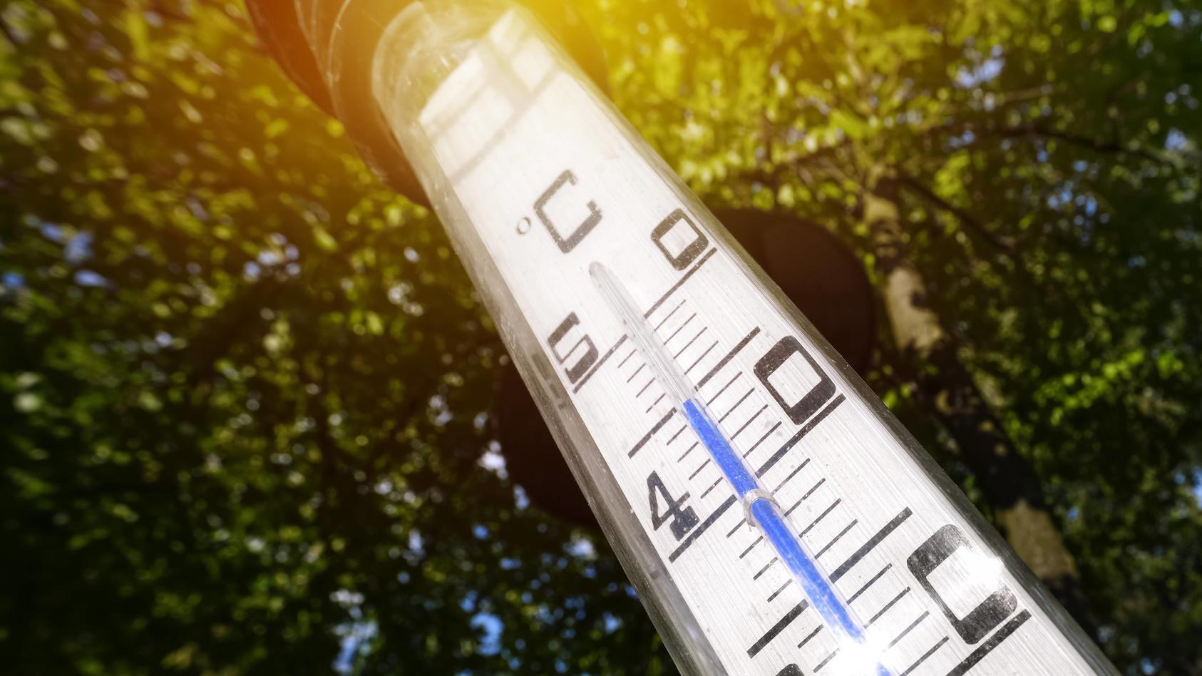 Neue Klimavorhersagen bewerten die globalen Temperaturen neu.