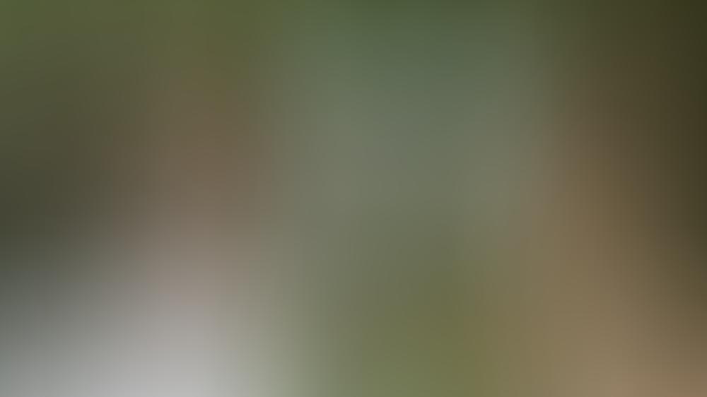 """In """"Das Schwiegermonster"""" geraten Jennifer Lopez (r.) und Jane Fonda aneinander"""